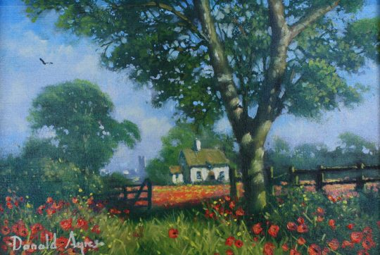 Cotswold Poppies - Donald Ayres