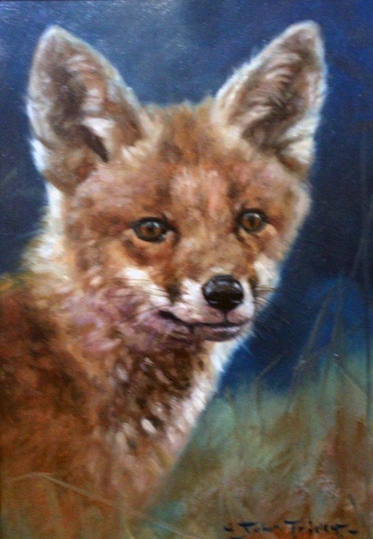 Foxy Fox by John Trickett