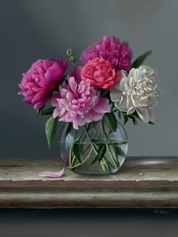 Peonies by Rob Ritchie