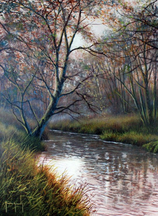 Autumn Stream by Terence Grundy