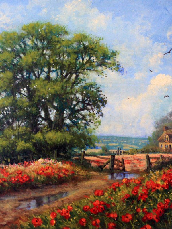 Cotswold Poppies by Donald Ayres