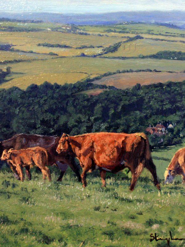 Hillside Pastures by Stephen Hawkins