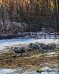 Sheep in Winter by Stephen Hawkins