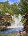The Waterfall by Terry Evans