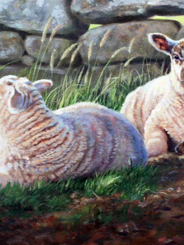 Two Lambs by Donna Crawshaw