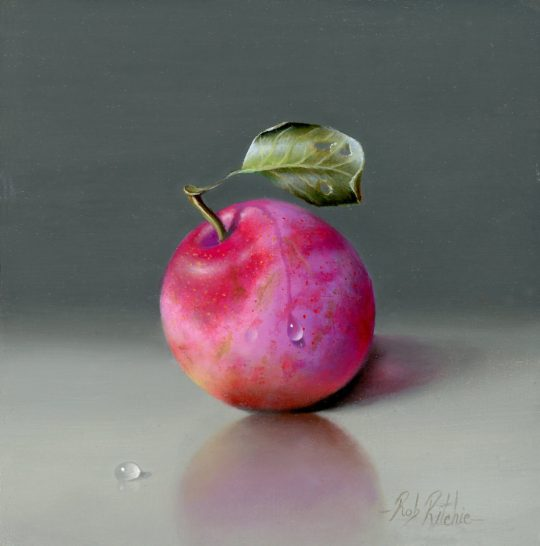 Opal Plum by Rob Ritchie