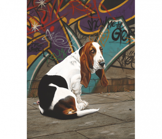 Dog End Street by Paul James