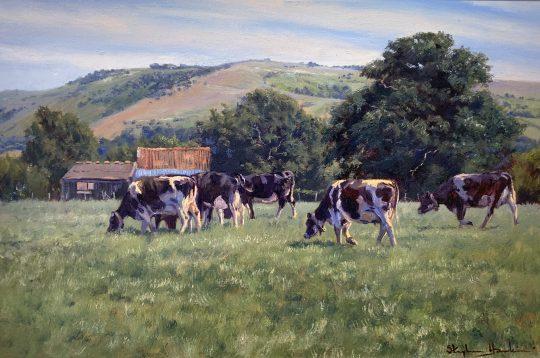 Gently grazing by Stephen Hawkins